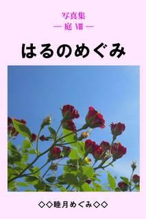 写真集 — 庭 �[ — はるのめぐみ 睦月めぐみ
