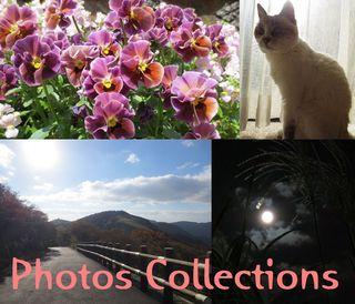 Photos Collections.jpg